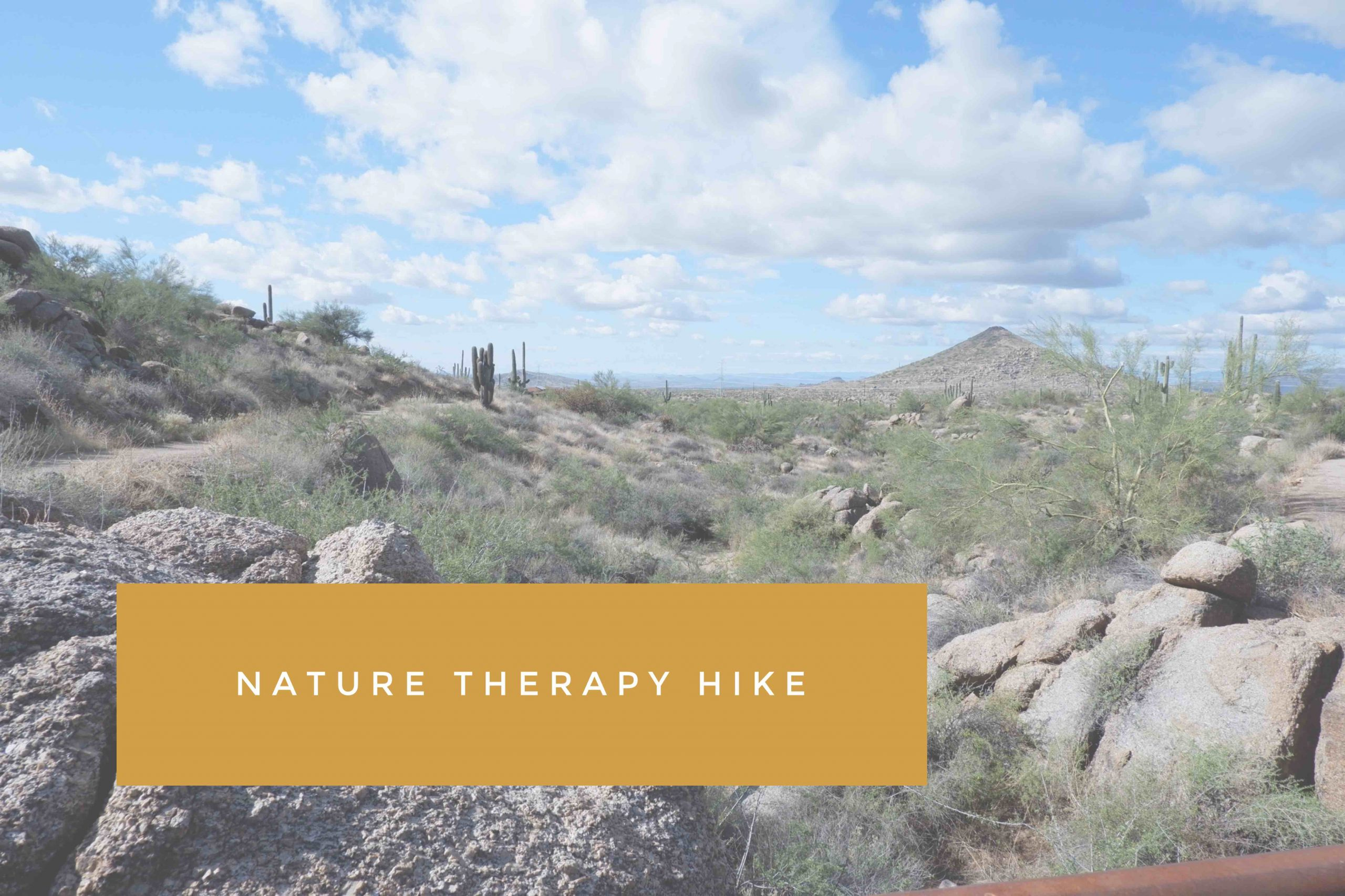 Catalyst January Meetup: Nature Therapy